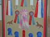 horse-ribbons-in-shadowbox